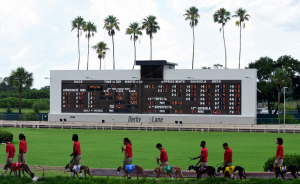GREYHOUND-RACING,DOGS,FLORIDA-GREYHOUND-ASSOCIATION,PALM-BEACH-KENNEL-CLUB,ANIMAL-RIGHTS-ACTIVIST,DOG-RACES 2